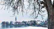 Im letzten Winter bildete sich vor dem Dorf am Untersee eine kleine Eisdecke. (Bild: Donato Caspari)