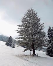Besinnliche Winterlandschaft