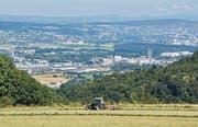 Vom Heitersberg aus ist in der Ferne die Stadt Zürich zu erkennen.