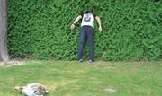 Die Suche nach dem Ball beim Crossgolf (Bild: Mengia Albertin)