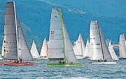 «Rund um»-Schnappschuss der drei besten Thurgauer Boote (Bild: Christoph Süssli)