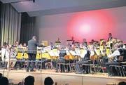 Blick aus dem Publikum auf den Musikverein Islikon-Gachnang. (Bild: Christof Lampart)