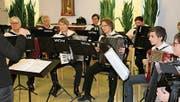 Das Harmonika-Orchester Herisau ist auf der Suche nach neuen Mitgliedern. (Bild: PD)