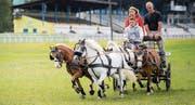 Yannik Scherrer bereitete sich auf der Frauenfelder Allmend auf die WM vor. (Bild: Andrea Stalder)