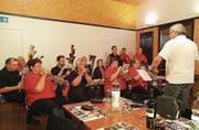 Die Musikformation beschenkt sich zum Ende der Feierlichkeiten mit einem Konzert im Pavillon des Murg-Auen-Parks. (Bild: PD)