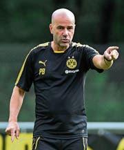 Der neue Dortmund-Trainer Peter Bosz beerbt Thomas Tuchel und soll wieder Ruhe in den Verein bringen. (Bild: Andy Müller/Freshfocus)