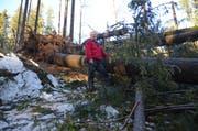 Revierförster Martin Lieberherr verschafft sich im Wald einen Überblick über den entstandenen Schaden. (Bild: Corinne Hanselmann)