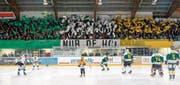 Die Stehplatztribüne in Grün, Weiss und Gelb: Die vielen Fans des HC Thurgau zeigten vor dem Playoff-Spiel gegen den EHC Olten eine gelungene Farbchoreografie. (Bilder: Marc Schumacher/Freshfocus)