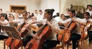Alles geben: Blick in die Reihen der Musizierenden. (Bild: alttoggenburger)