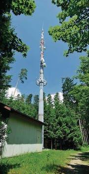 Anstelle des 54 Meter hohen Sendemasts erstellt die Swisscom auf dem Sirnachberg eine elf Meter längere Anlage. (Bild: Mario Testa)