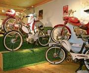 Bei 39 Motorrädern ist für jeden etwas dabei. (Bild: Lisa Inauen)