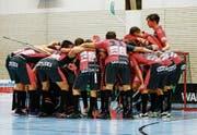 Für die Mannschaft von Floorball Thurgau ist das Erreichen der Playoff-Halbfinals eine lösbare Aufgabe. (Bild: PD)