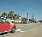 Die Bauarbeiten auf der Wallenwilerstrasse in Eschlikon sollen nicht länger als acht Wochen dauern. (Bild: Olaf Kühne)