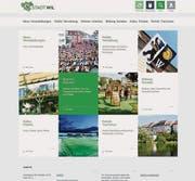 Die neue Website ist inhaltlich in fünf Rubriken gegliedert. (Bild: pd)
