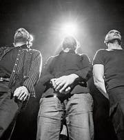 Christian Weiss, Daniel Schaub und Roman Riklin bilden das Trio Heinz de Specht. (Bild: PD)