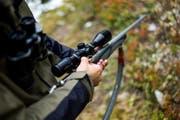 Der Jäger ging davon aus, dass es sich beim beobachteten Tier um einen Fuchs handelt. Er schoss und traf einen zehnjährigen Border Collie. (Bild: KEYSTONE)