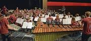 Das Jugendorchester spielte am Samstag im Dreispitz Kreuzlingen. (Bild: PD)