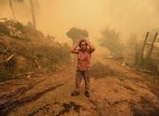 Portugal wird schon seit Monaten von Waldbränden heimgesucht, so wie hier Pampilhosa da Serra im Zentrum des Landes. (Bild: Paulo Novais/EPA)