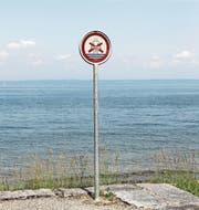 Das Baden am Horner Seeufer ist verboten. Die Regel wird nicht von allen eingehalten. (Bild: Lisa Wickart)