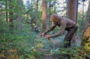 Wildhüter Benedikt Jöhl hilft beim Anbringen des Hanfs engagiert mit. (Bilder: Olivia Hug)