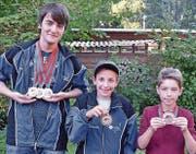 Pascal Schmidt, David Widmer und Alik Flury (von links). (Bild: PD)