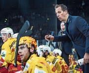Trainer Antti Törmänen im Einsatz. (Bild: Melanie Duchene/Keystone)