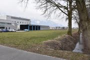 Auf dieser grünen Wiese an der Scharastrasse in Haag, zwischen der Druckerei und dem kleinen Bach, möchte die Politische Gemeinde Sennwald eine Parkanlage mit 94 Abstellplätzen errichten. (Bild: Heini Schwendener)