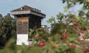 Tröckneturm im Areal der Burgweier Letztmals geöffnet für die Öffentlichkeit in dieser Saison Aktion der Tourist Information Bilanz? Verknüpft mit einem gut bebilderten Augenschein. (Bild: Hanspeter Schiess)