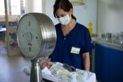 Neonatologie-Plätze sind in der Schweiz beschränkt: Eine St.Gallerin wurde deshalb nach Chur verlegt. (Bild: Ralph Ribi/Archiv)