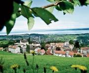 Walzenhausen muss mit 4,4 Hektaren am meisten Bauland auszonen. (Bild: APZ)