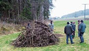 Naturschützer, Landbesitzer und Landbewirtschafter neben einem Holzhaufen, der als Wieselunterschlupf dient. (Bild: PD)