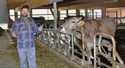 Bio-Bauer Willi Schweizer in seinem grosszügigen Laufstall für behornte Kühe. Die spezielle Fixiermöglichkeit der Kühe ermöglicht allen Tieren auch im Laufstall ungestörtes Fressen. (Bilder: Adi Lippuner)