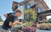 Lehrling Lucian Toszeghi bei seiner liebsten Beschäftigung, dem Pflanzengiessen. (Bilder: Nana do Carmo)