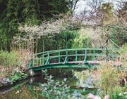 Berühmtes Motiv: Monets Garten in Giverny. (Bild: Patrick Güller)