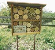 Das von den Schülern erstellte Wildbienenhotel. (Bild: PD)