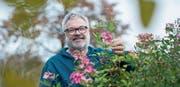 Martin Leuthold lässt sich im Garten seines Zuhauses inspirieren. (Bild: Hanspeter Schiess)