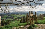 Das Appenzellerland als Wandergebiet zu bewerben, gehört zu den Aufgaben der Atag. (Bild: PD)