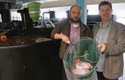 Fischwirt Olaf Weinreich (links) und Geschäftsführer Philipp Gschwend mit dem exotischen Fisch Tilapia. (Bild: Martin Brunner)