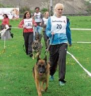 Die Teilnehmer präsentieren ihre Schäferhunde der Königsklasse der Gebrauchshunde den Richtern. (Bild: Manuela Olgiati)