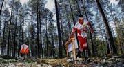 07.07.2013, Vuokatti, Finland (FIN): Daniel Hubmann (SUI) - World Orienteering championships 2013, long distance qualification. http://www.woc2013.fi. © Laiho/WOC2013. (Bild: WOC2013)