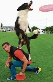 Herrchen und Hund machen gemeinsame Sache. (Bild: Helio Hickl)