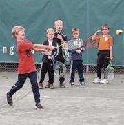 Beim Schnupperkurs des Tennisclubs Seidenbaum wurden verschiedene Tennis-Spiele ausprobiert.