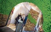 Die Sonderausstellung «Natur im Raum» zeigt, wie dekorativ zum Beispiel Moos eingesetzt werden kann. (Bild: Andrea Stalder)
