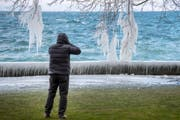 Am Bodensee in Rorschach zauberten die Kälte und die Bise Eiskunstwerke in die Landschaft. (Bild: Urs Bucher)