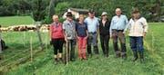 Ein gelungenes Spektakel: Alpabfahrt mit 340 Schafen und zahlreichen Helfern von der Frümsner Alp Alpeel. (Bilder: PD)
