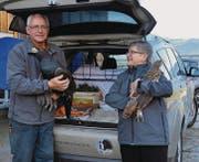 Traurige Reise: Hans und Gerlinde Brüsch brachten am Montag den Auerhahn Johann und zwei Auerhühner in den Tierpark Feldkirch. (Bild: mge)