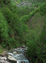 Der Nationalpark soll auch Lebensraum der Tessiner Bevölkerung sein. (Bild: Carlo Reguzzi/Keystone (Vergeletto, 29. April 2014))
