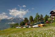 Ein bestehender Zug der Montreux-Oberland-Bahn. (Bild: BLS)