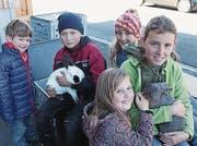 Gian Martìn, Marvin, Leonie, Mina und Leoni (von links) mit Kalifornier Kleinsilberkaninchen, weiss und havannafarben. (Bilder: Silvia Frick)