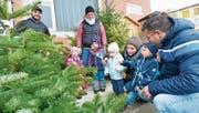 Bei Familie Kämpf und Familie Schönenberger dürfen die Kinder mitentscheiden, welcher Christbaum gekauft wird. (Bild: Donato Caspari)